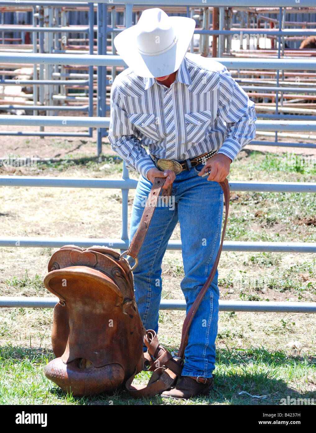 A saddle bronc rider preparing for his ride at the Westcliffe, Colorado rodeo (July 2008) - Stock Image