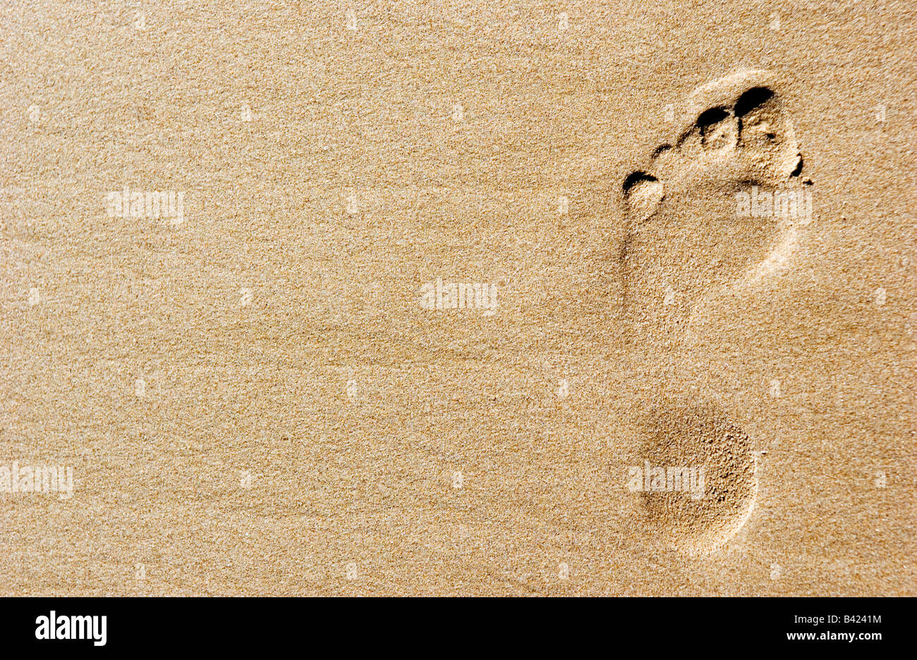 footprint in the sand of a beach - Stock Image