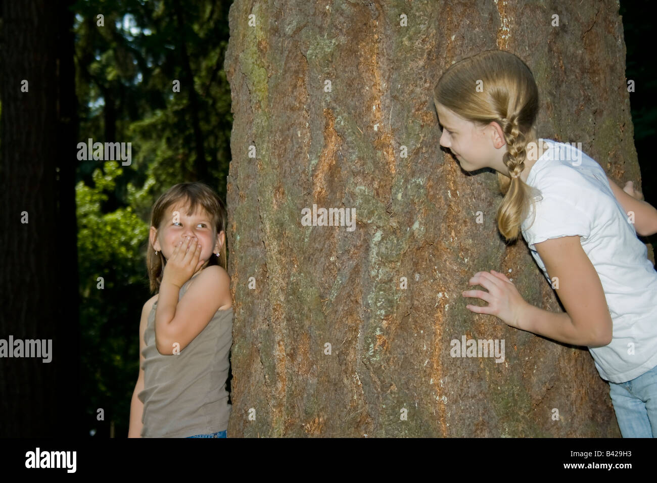 Two young girls playing hide and seek in a forest area - Stock Image
