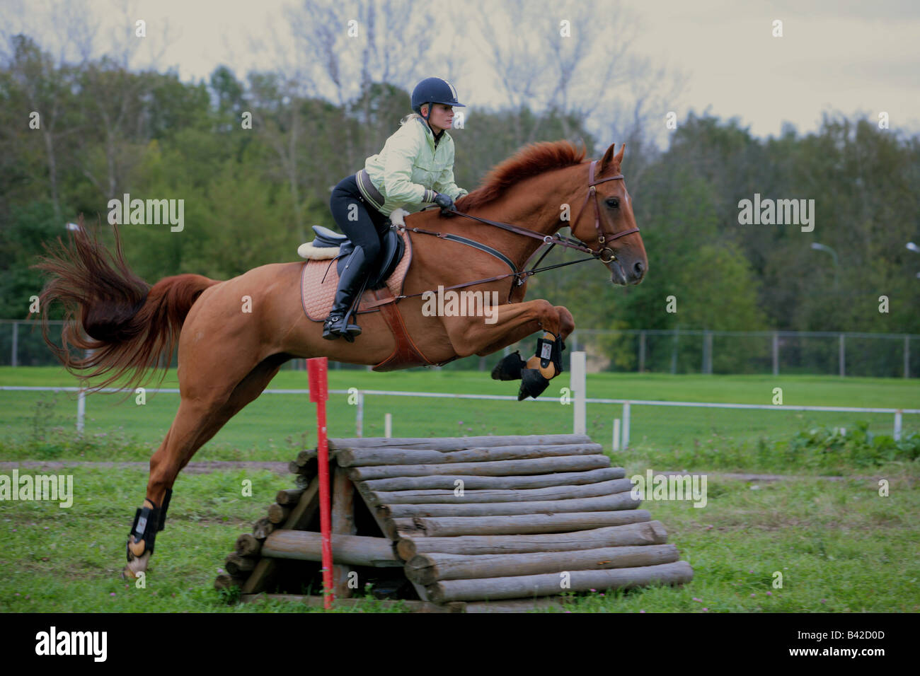 Equestrian  jumping fence three day event competition - Stock Image