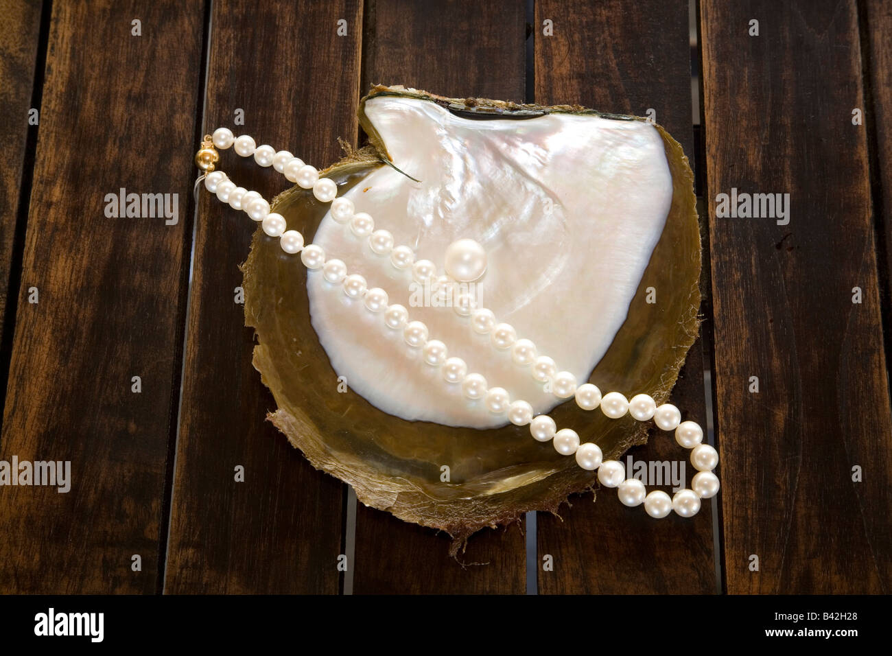 Pearls Farm finished Products made by Pearls Bali Desa Pemuteran Singaraja Indo Pacific Indonesia - Stock Image
