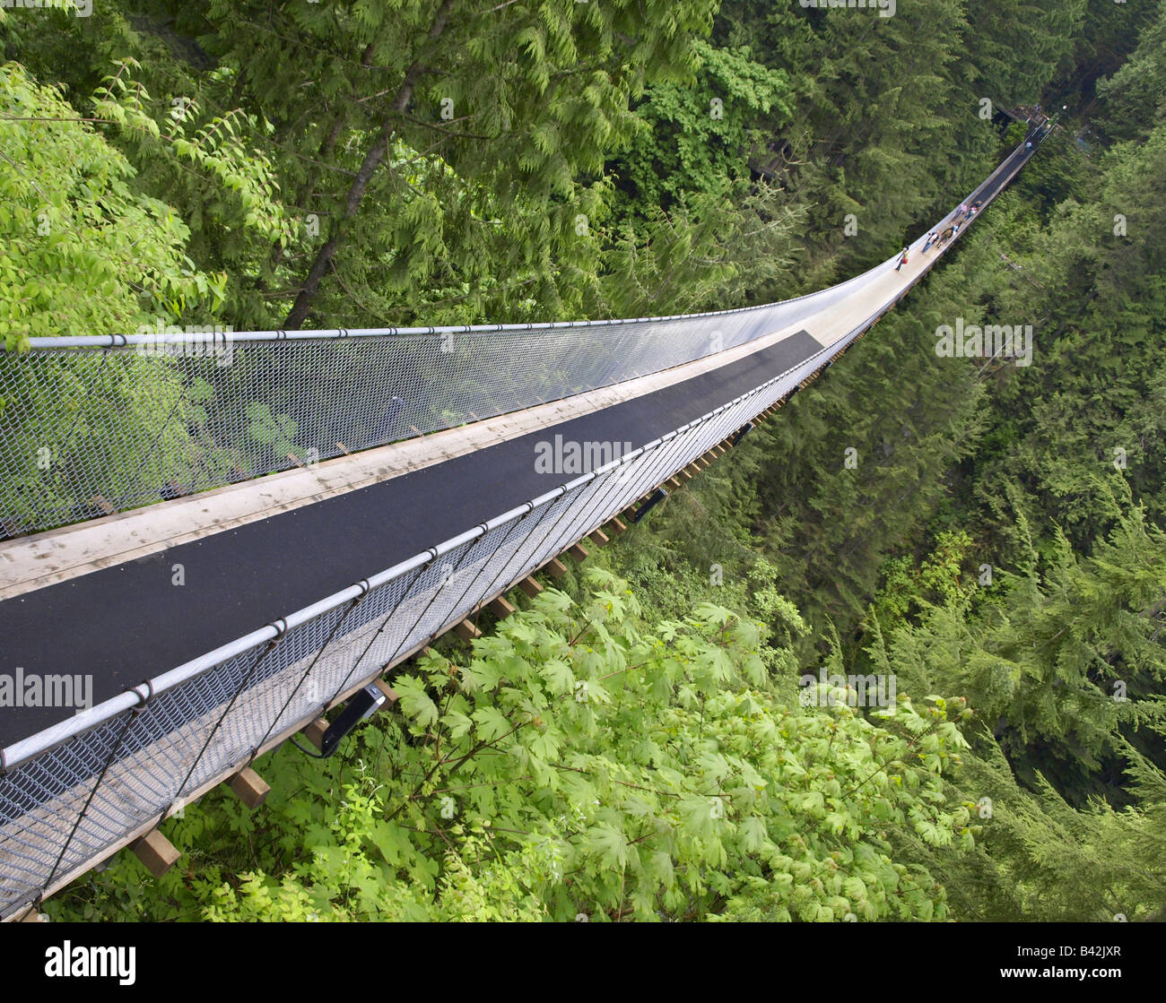 Capilano Suspension Bridge, Vancouver, Canada - Stock Image