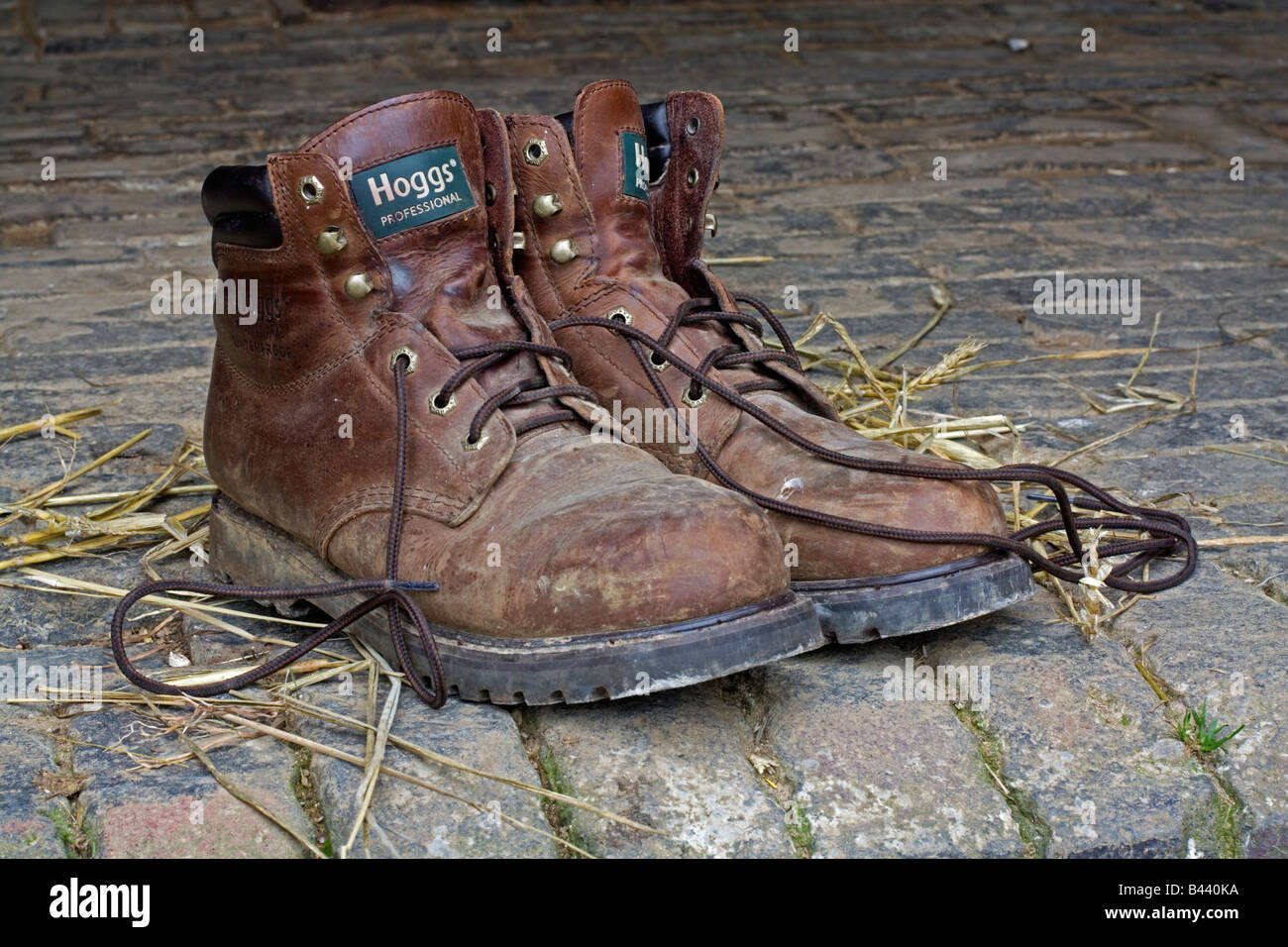 Pair of working men's boots Stock Photo: 19757342 Alamy