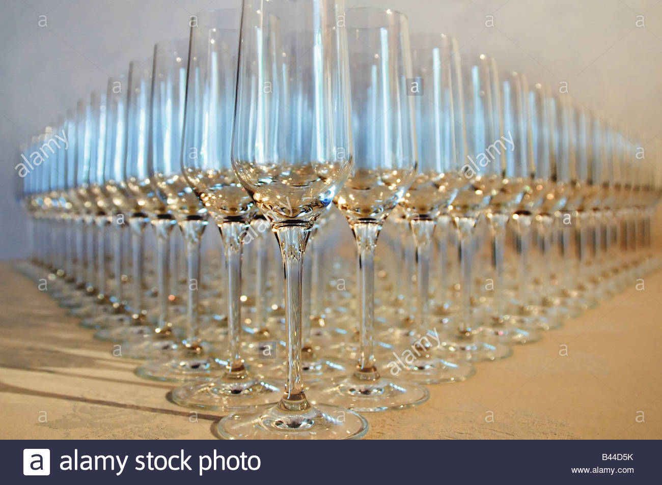 Wine glasses lined up in rows - Stock Image