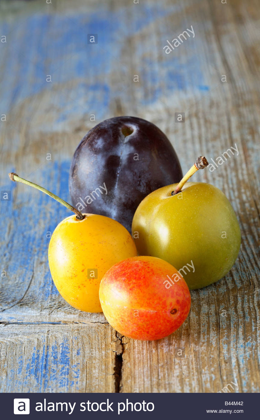 Selection of plums - Stock Image
