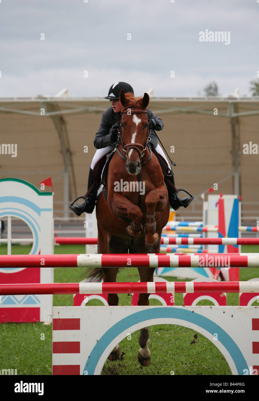 Rider jumping fence showjumping competition - Stock Image