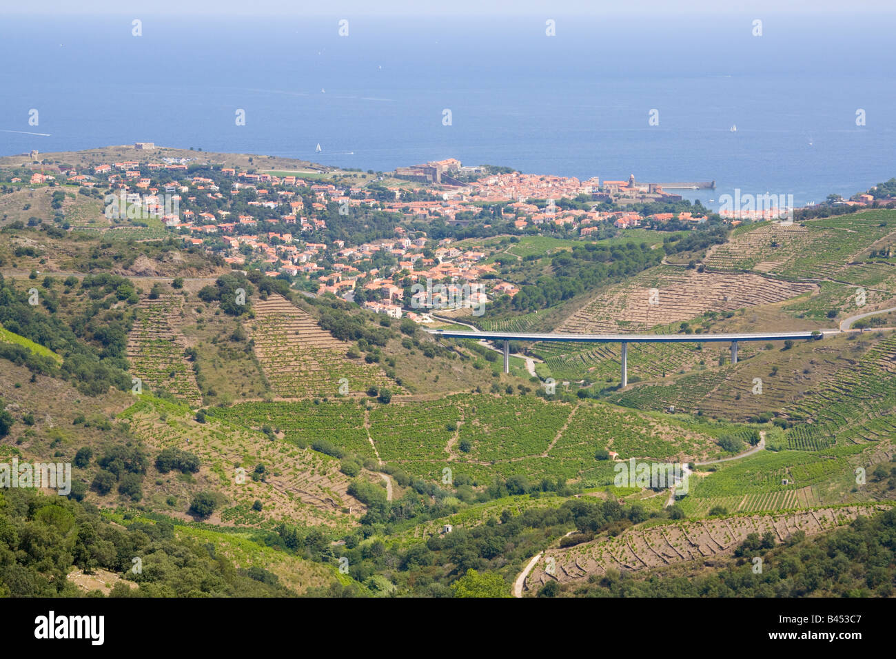 Collioure and its vineyards in the back country of the mediterranean Cote Vermeille, origin of the wine of Banyuls - Stock Image