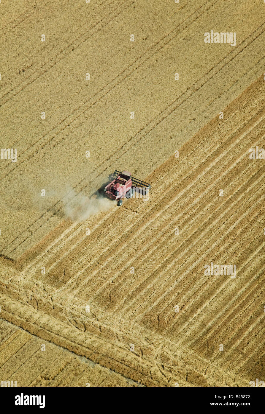above aerial harvesting hay straw Central Valley California farming - Stock Image