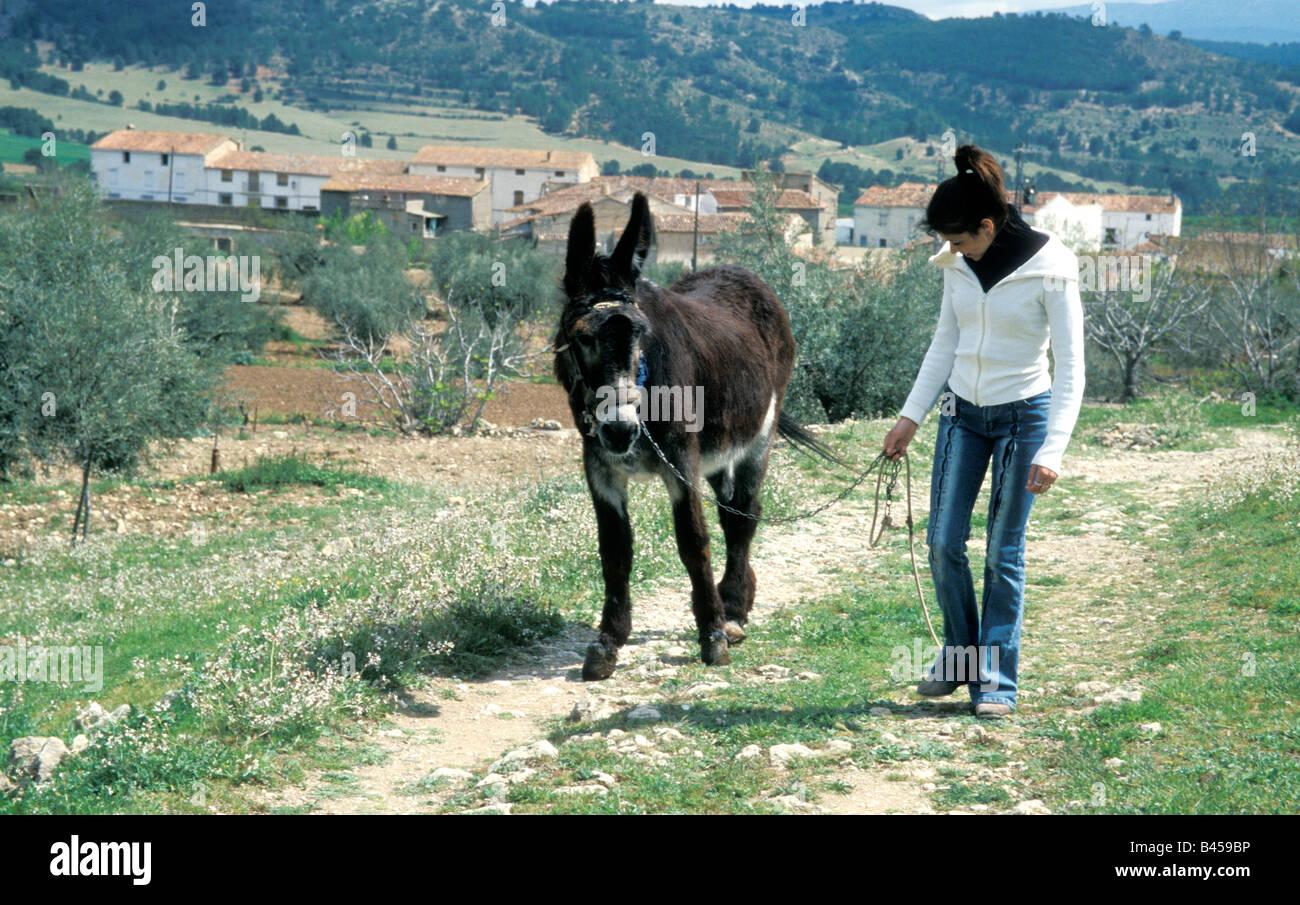 teenage girl walking donkey in spanish mountains - Stock Image