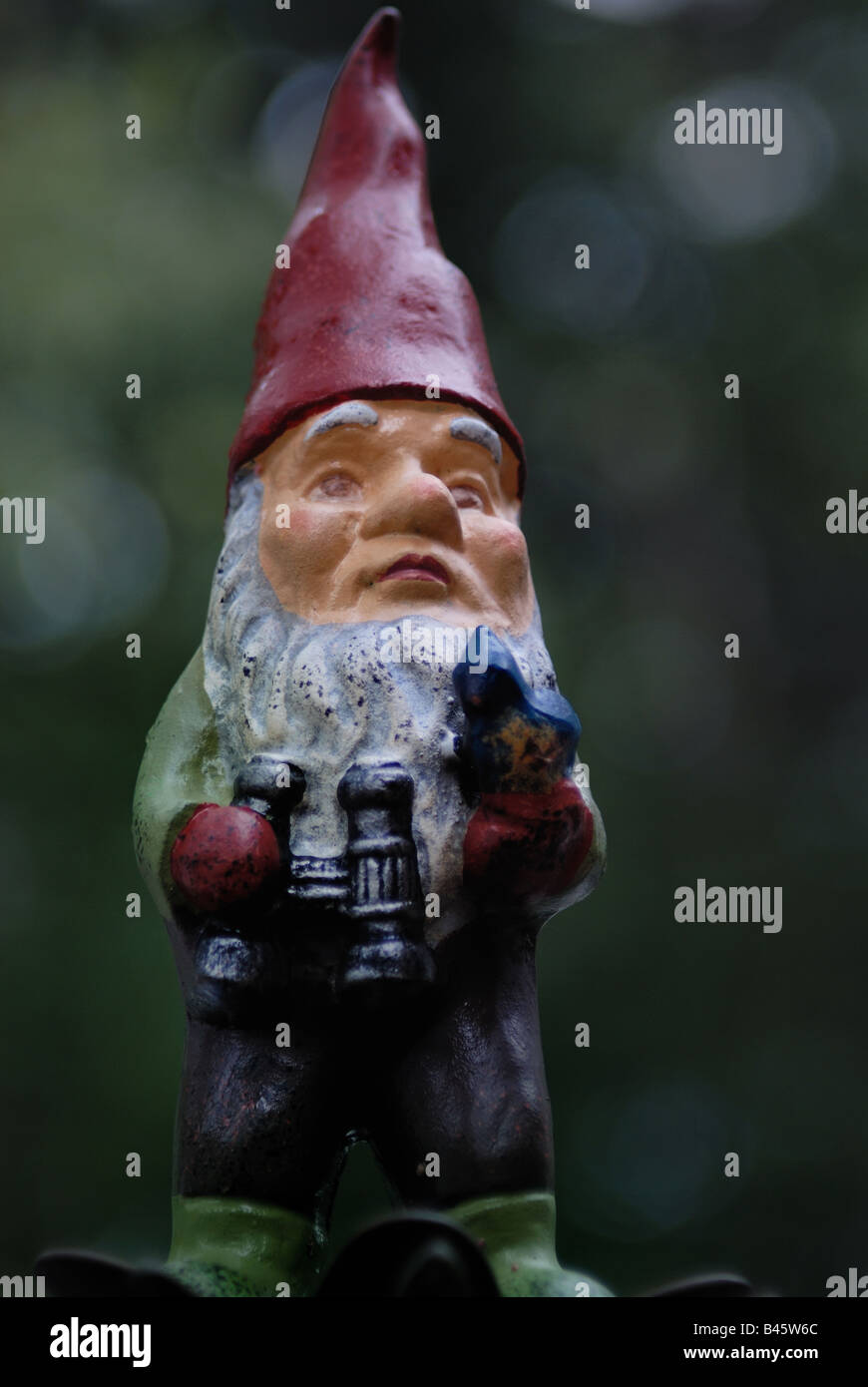 A portrait of a bearded garden gnome wearing a red pointy hat, holding binoculars and a bluebird. - Stock Image