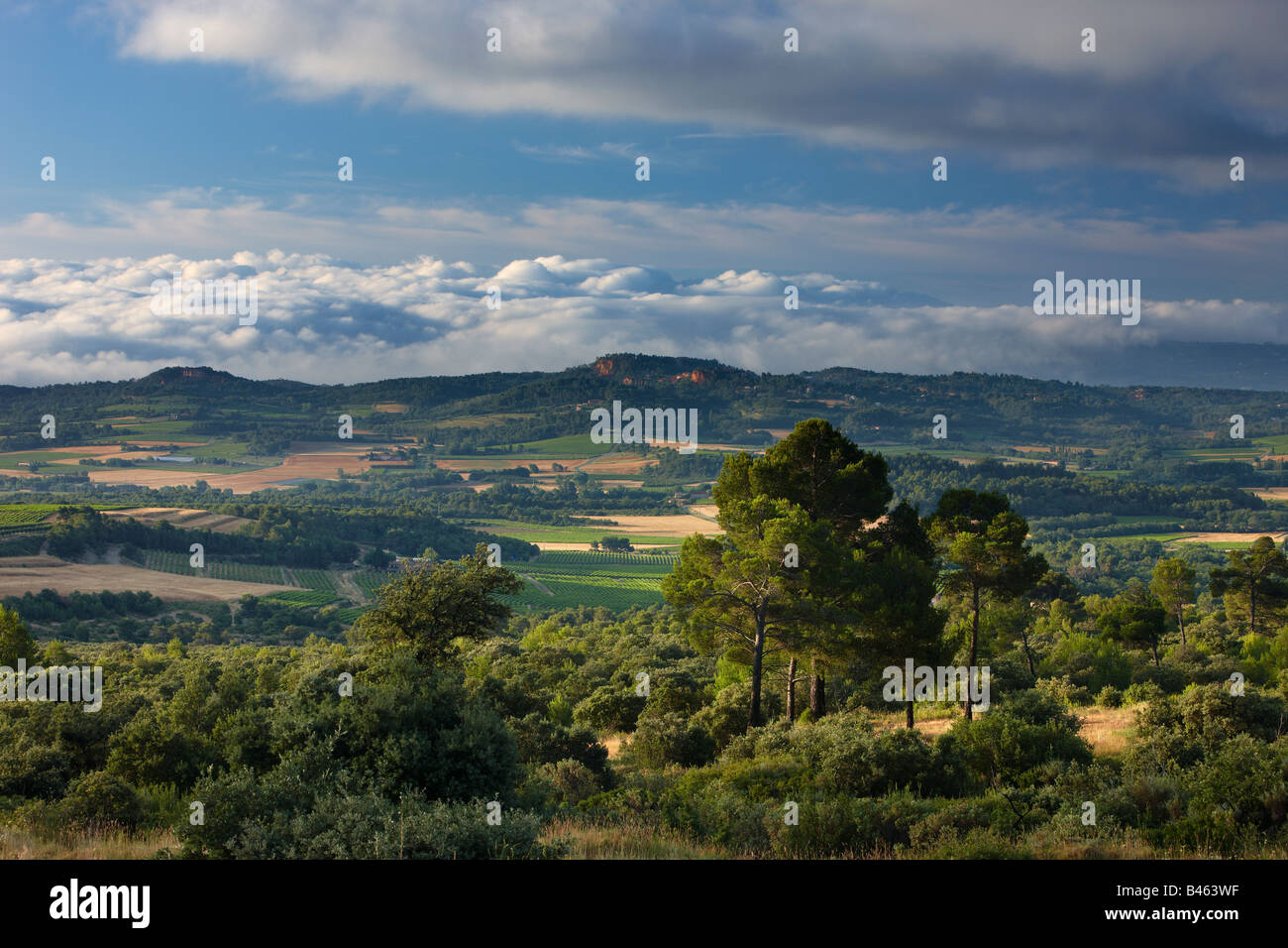 rolling woods and farmland near Rousillon at dawn, the Vaucluse, Provence, France - Stock Image