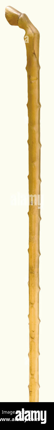 A rhinoceros horn walking stick, England, middle of the 19th century A slender cane of yellowish rhinoceros horn. Stock Photo