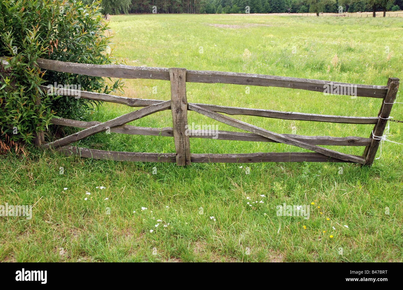 Old Barbed Wire Fence Pasture Stock Photos & Old Barbed Wire Fence ...