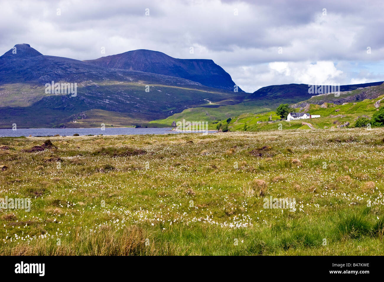 Loch Assynt Sutherland, Highlands Scotland United Kingdom Great Britain UK 2008 - Stock Image