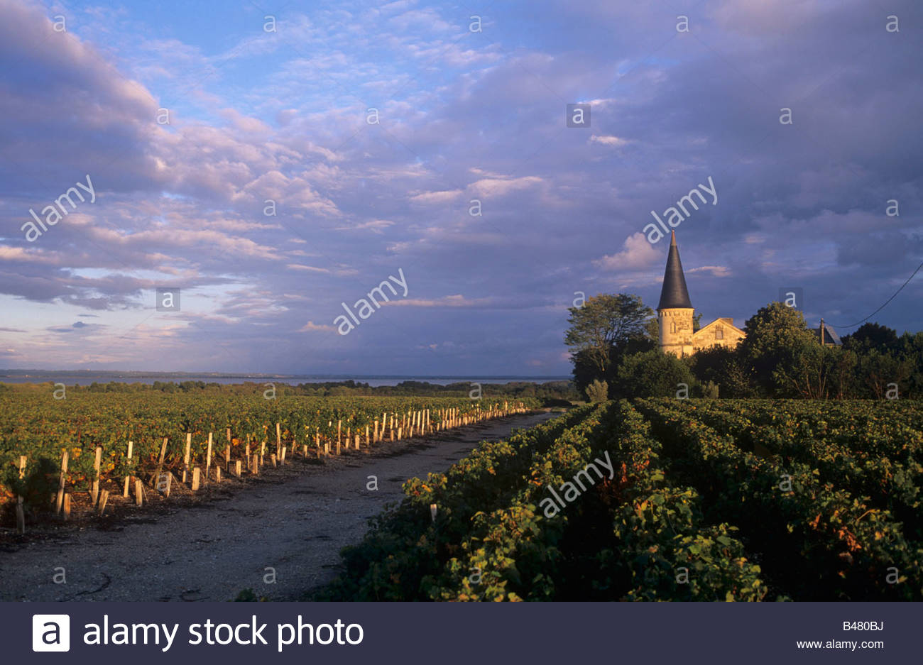 A chateau of the Crus Bourgeois class, Medoc, France - Stock Image