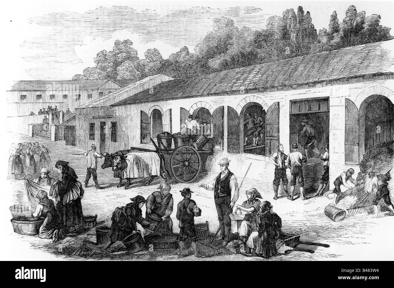 alcohol, sparkling wine, production, plant for blending young wines, winery Chateau Lafitte, France, wood engraving, - Stock Image