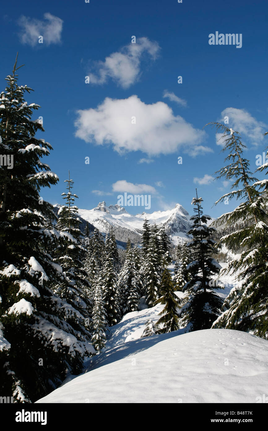 winter mountain scenery in Whistler BC - Stock Image