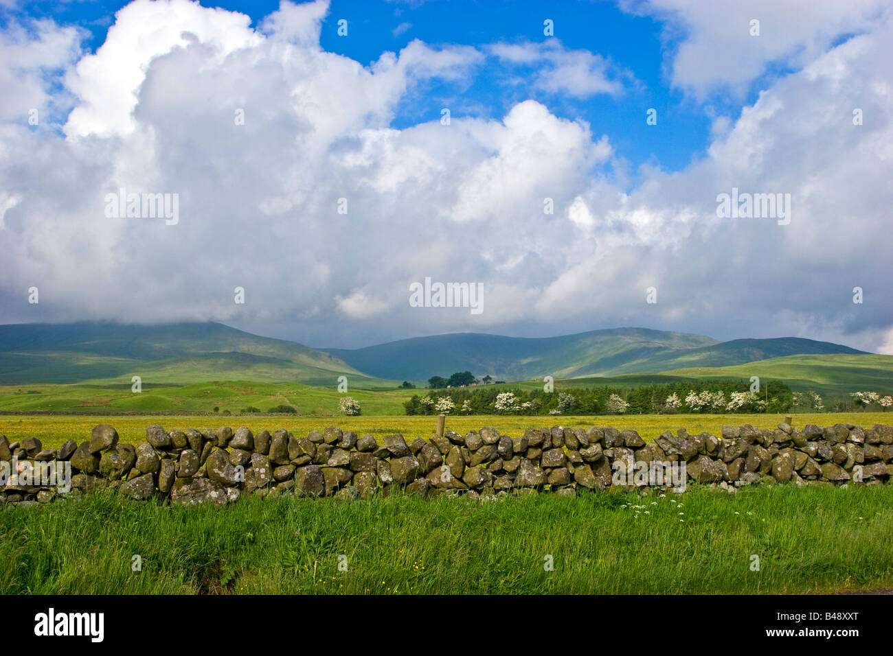 Countryside near Carsphairn Dumfries and Galloway Scotland UK 2008 - Stock Image