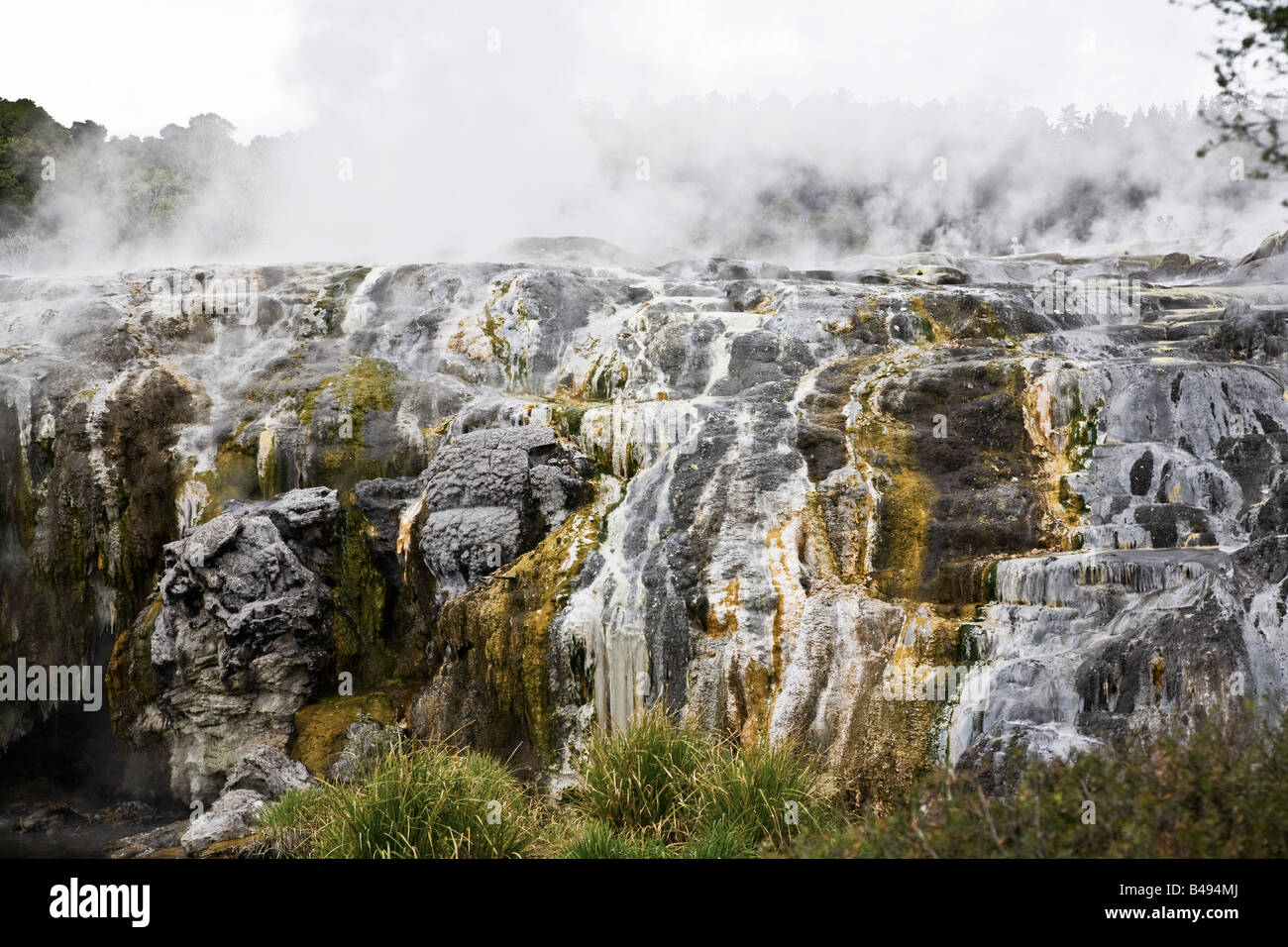 Hot springs in Rotorua, New Zealand - Stock Image