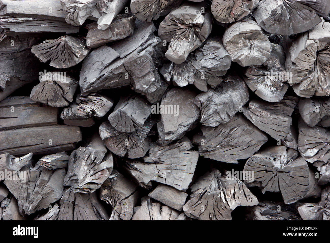 charcoal carbon cooking fuel burnt wood fire - Stock Image