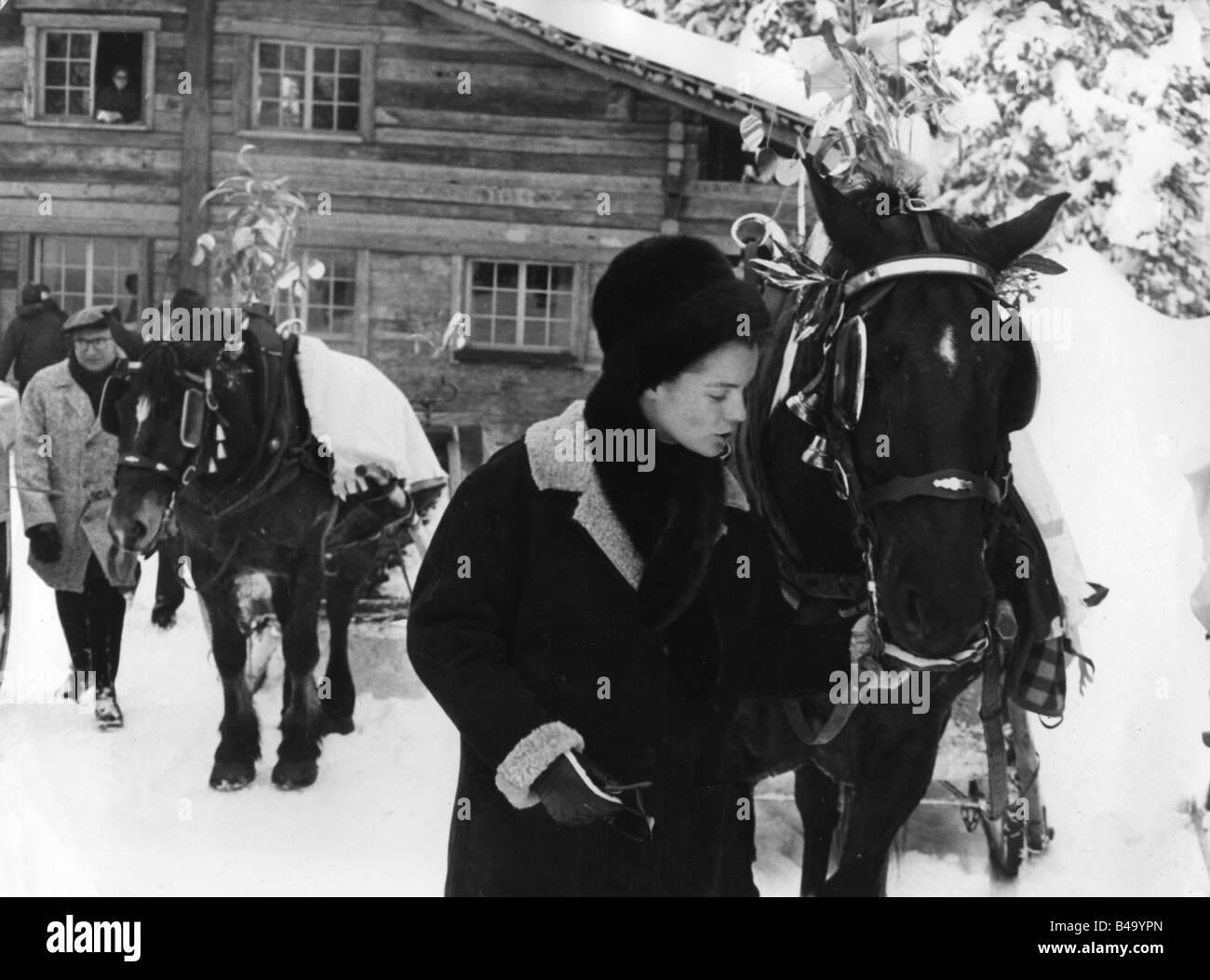 Schneider, Romy, 23.9.1938 - 29.5.1982, German actress, half length, standing beside horse, winter holidays, Megeve, Stock Photo