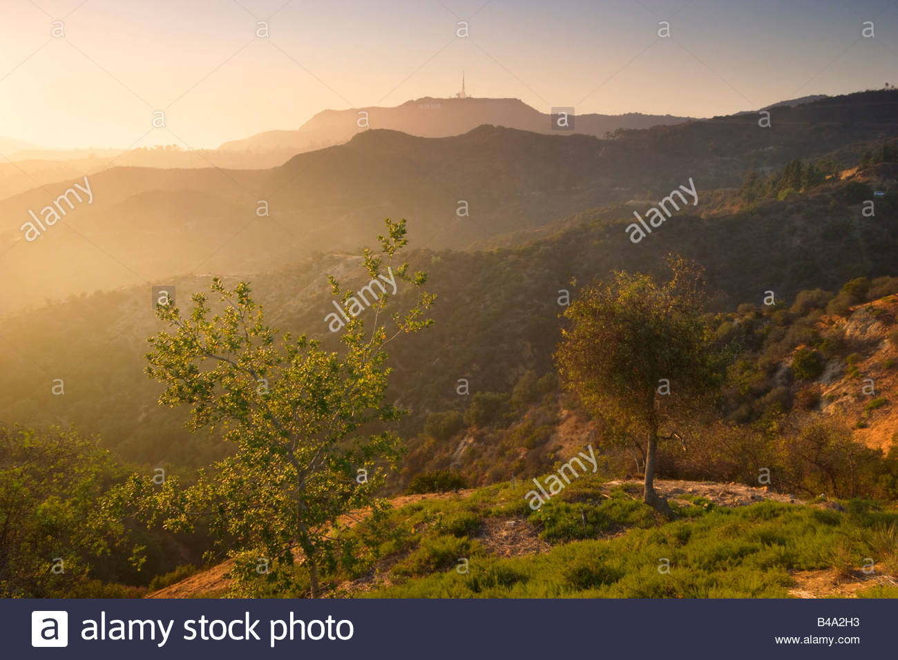 Hollywood Hills Scenic Landscape from Griffith Park Los Angeles California - Stock Image