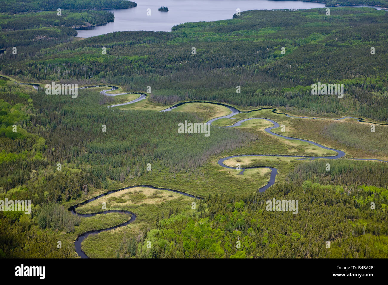 Aerial view of lakes, Islands and forest of Northern Ontario, Red Lake, Ontario, Canada. - Stock Image