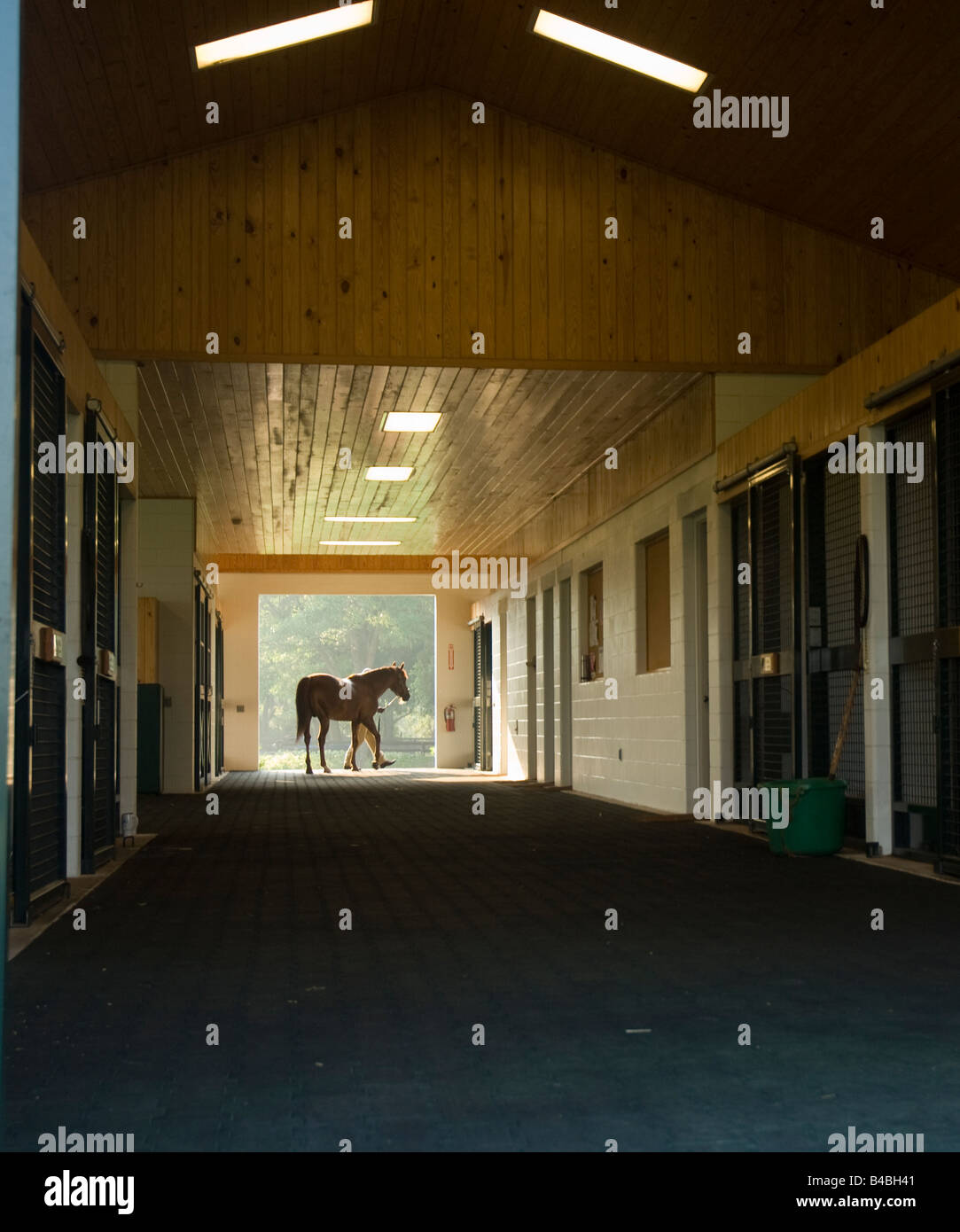 Thoroughbred horse farm barn - Stock Image