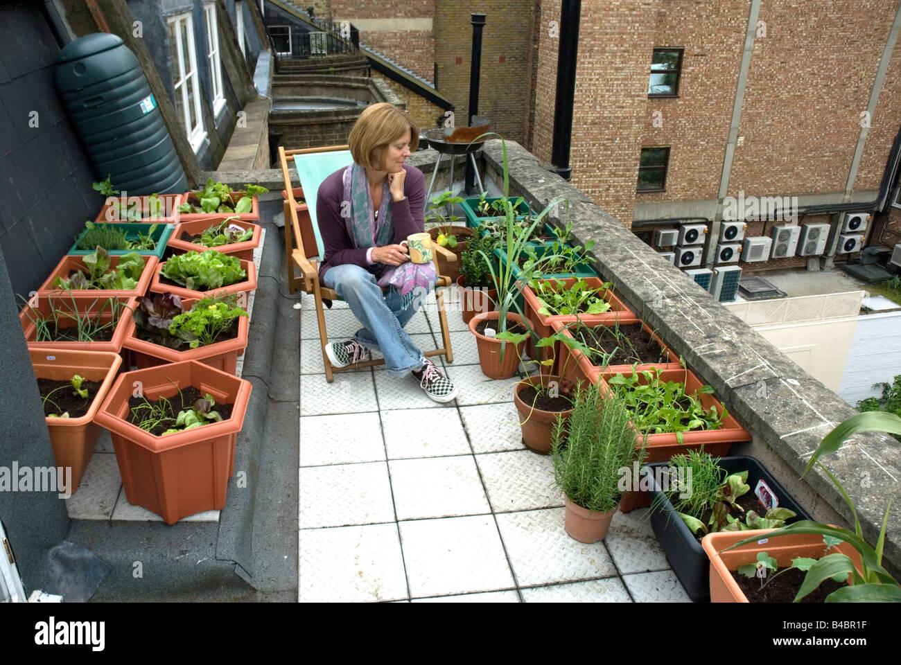 woman looking at vegetables salads urban rooftop vegetable garden rh alamy com vegetables on rooftop gardening planting vegetables on roof