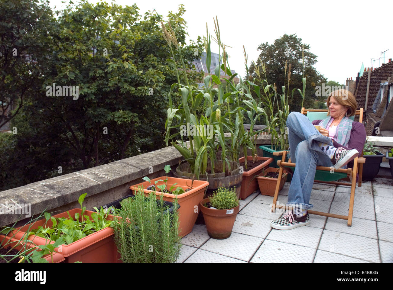 Woman Looking At Vegetables Salads Urban Rooftop Vegetable Garden