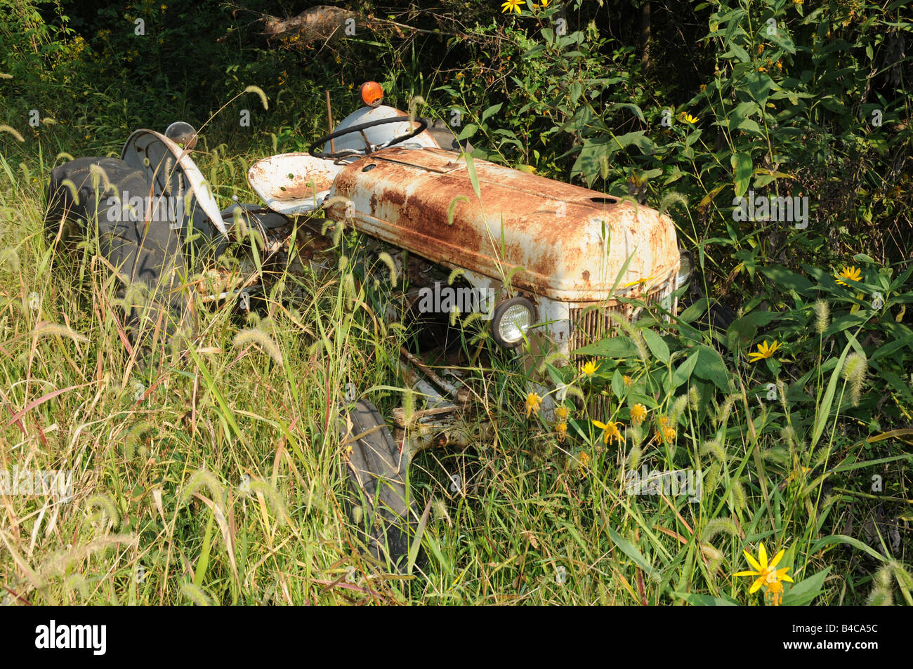 Old farm tractor no longer used and surrounded by weeds - Stock Image