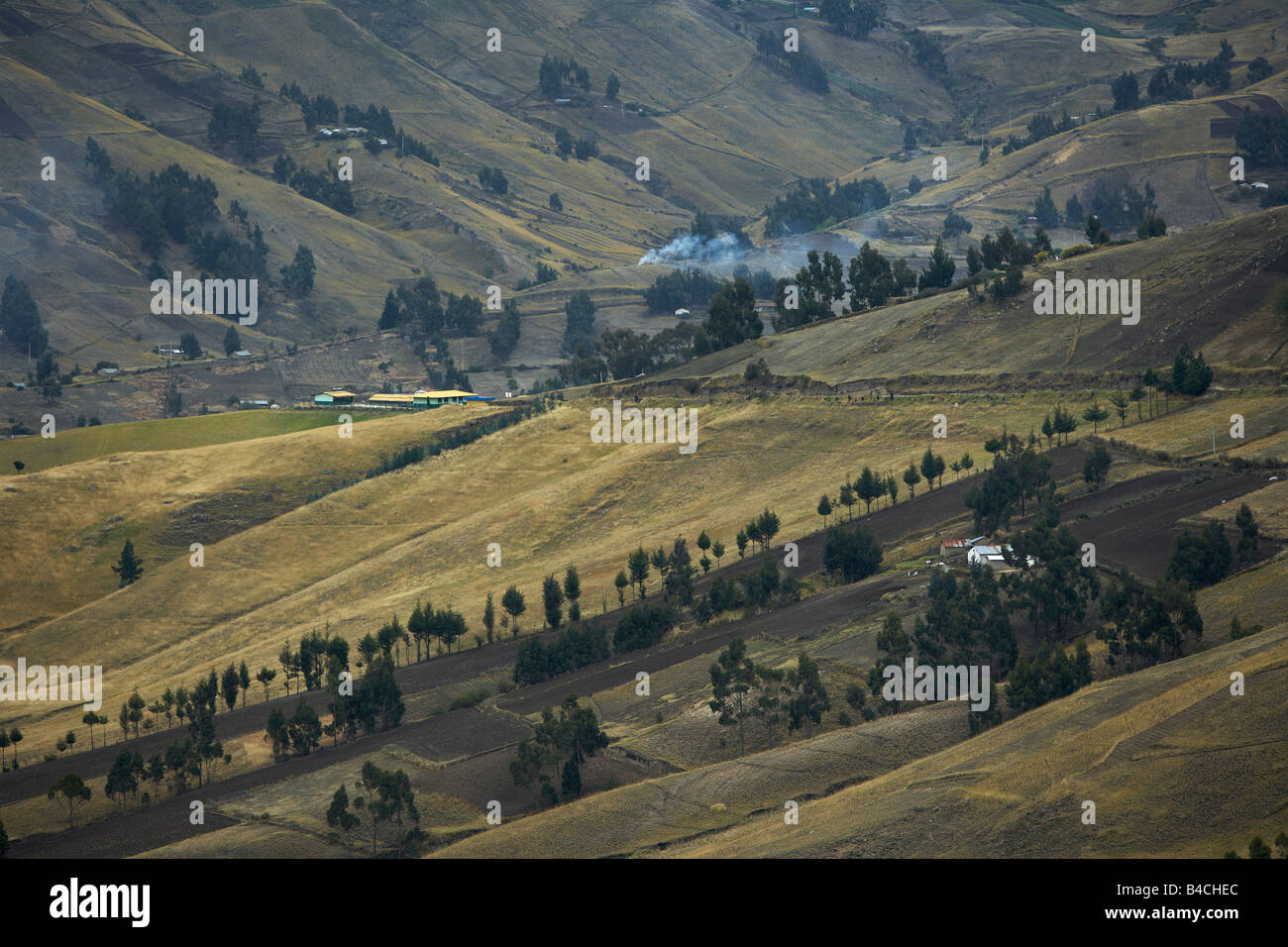 Fields in Andes Mountains, Ecuador - Stock Image