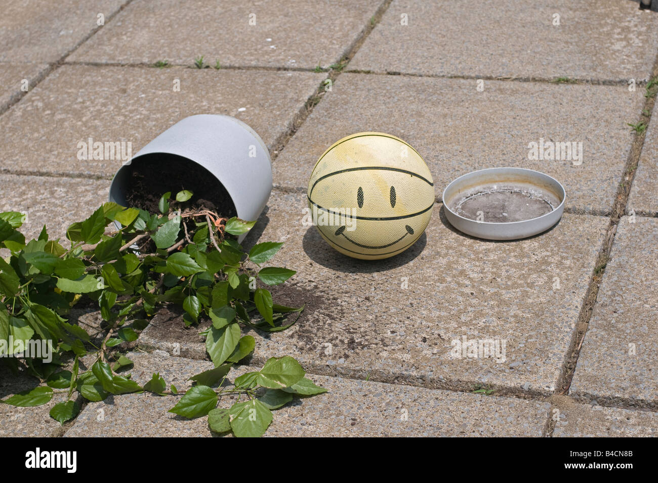 Flowerpot with plant smashed down on the paved ground by a ball. - Stock Image
