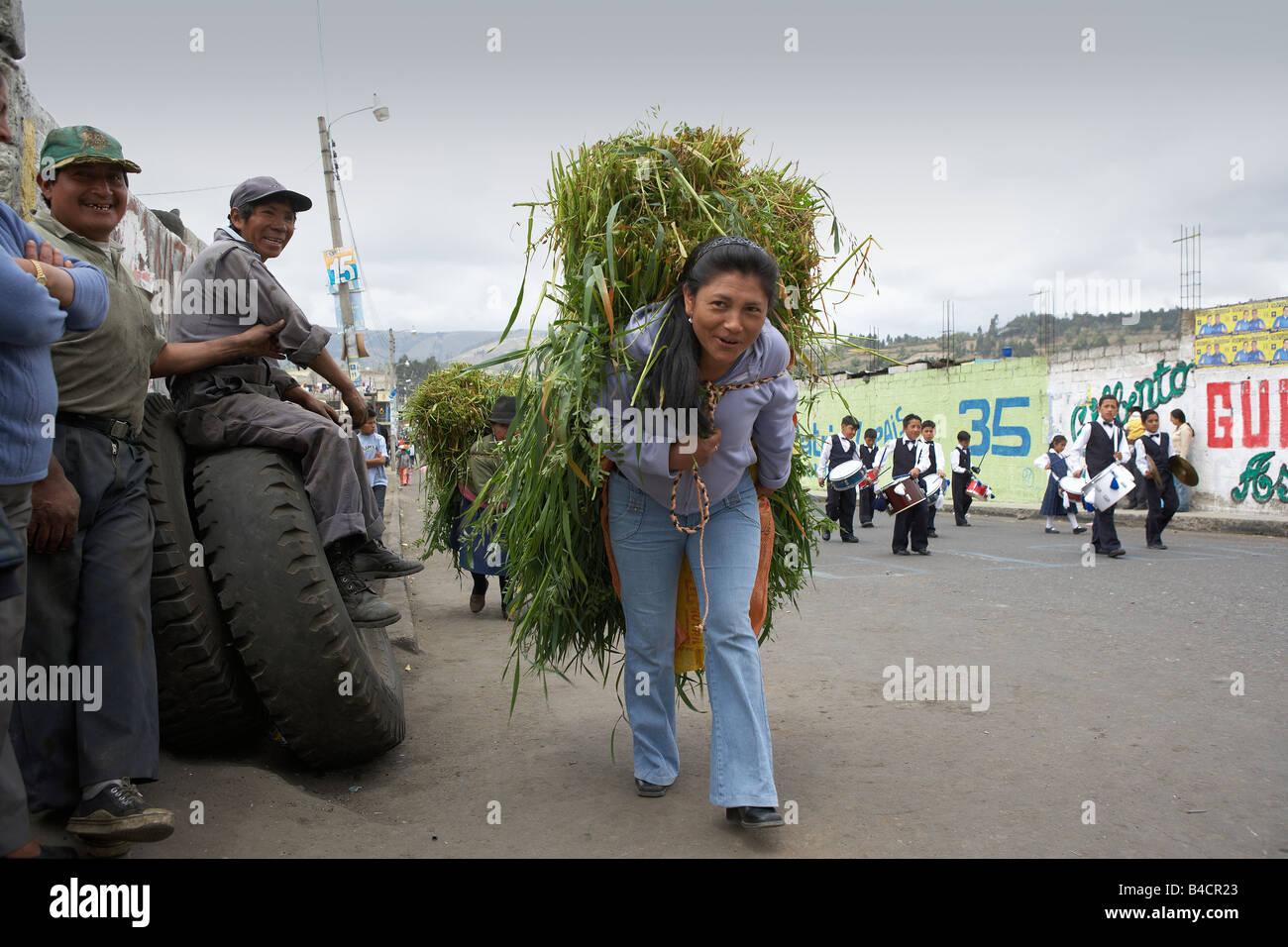 Woman carrying grass for animals, Otavalo Ecuador - Stock Image