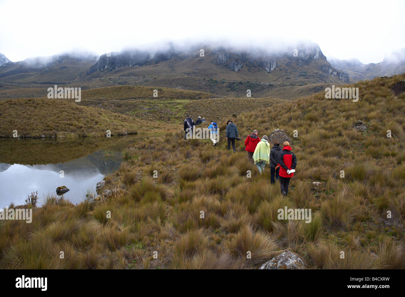 Tour group hiking in Andes Mountains, Ecuador - Stock Image