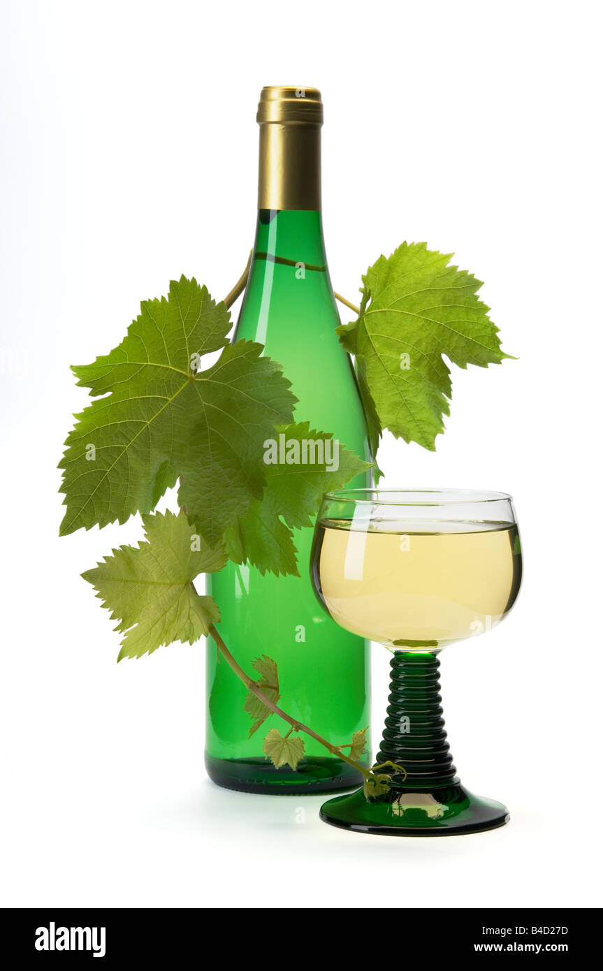 Still life. Glass of german Riesling with bottle and grape vine on white background. - Stock Image