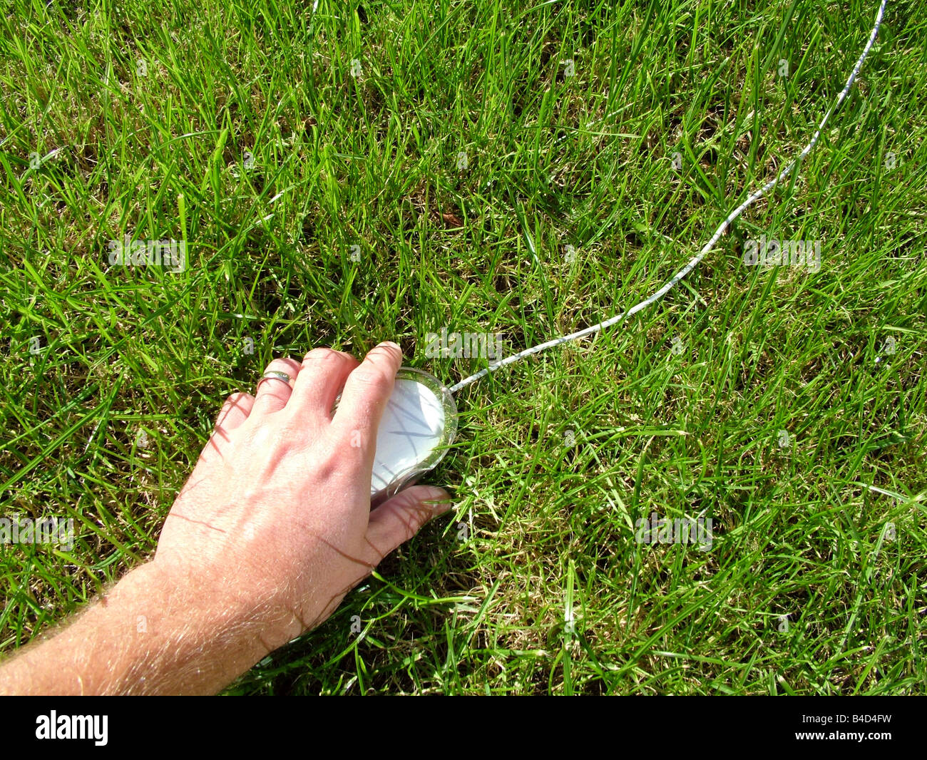 Computer mouse on grass Stock Photo