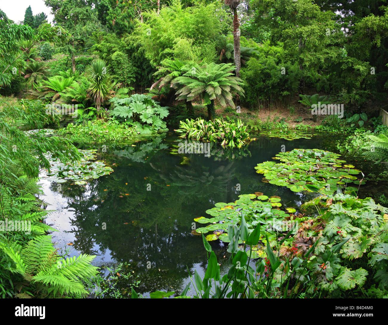 Lost gardens of Heligan,pentewan,st.Austell,Cornwall,england - Stock Image