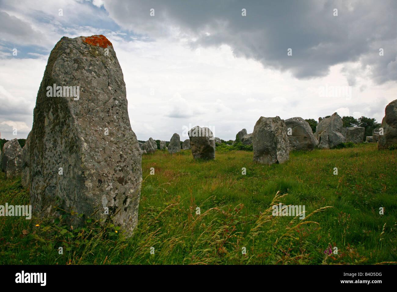 July 2008 - Megalithic stones alignments de Kremario Carnac Morbihan Brittany France Stock Photo