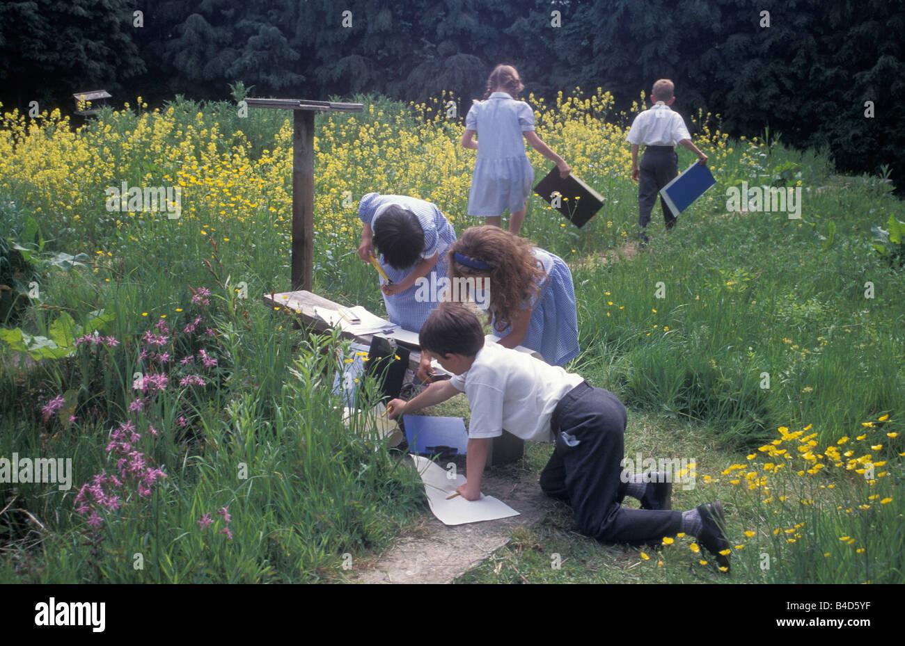 primary school kids on nature study field trip - Stock Image