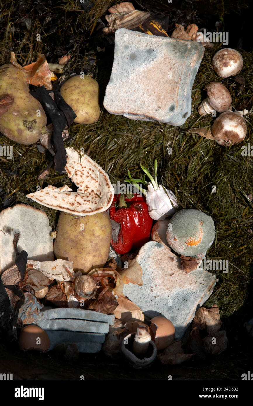 rotting wasted food thrown out by a household into the brown recycling bin for collection to make into compost in - Stock Image