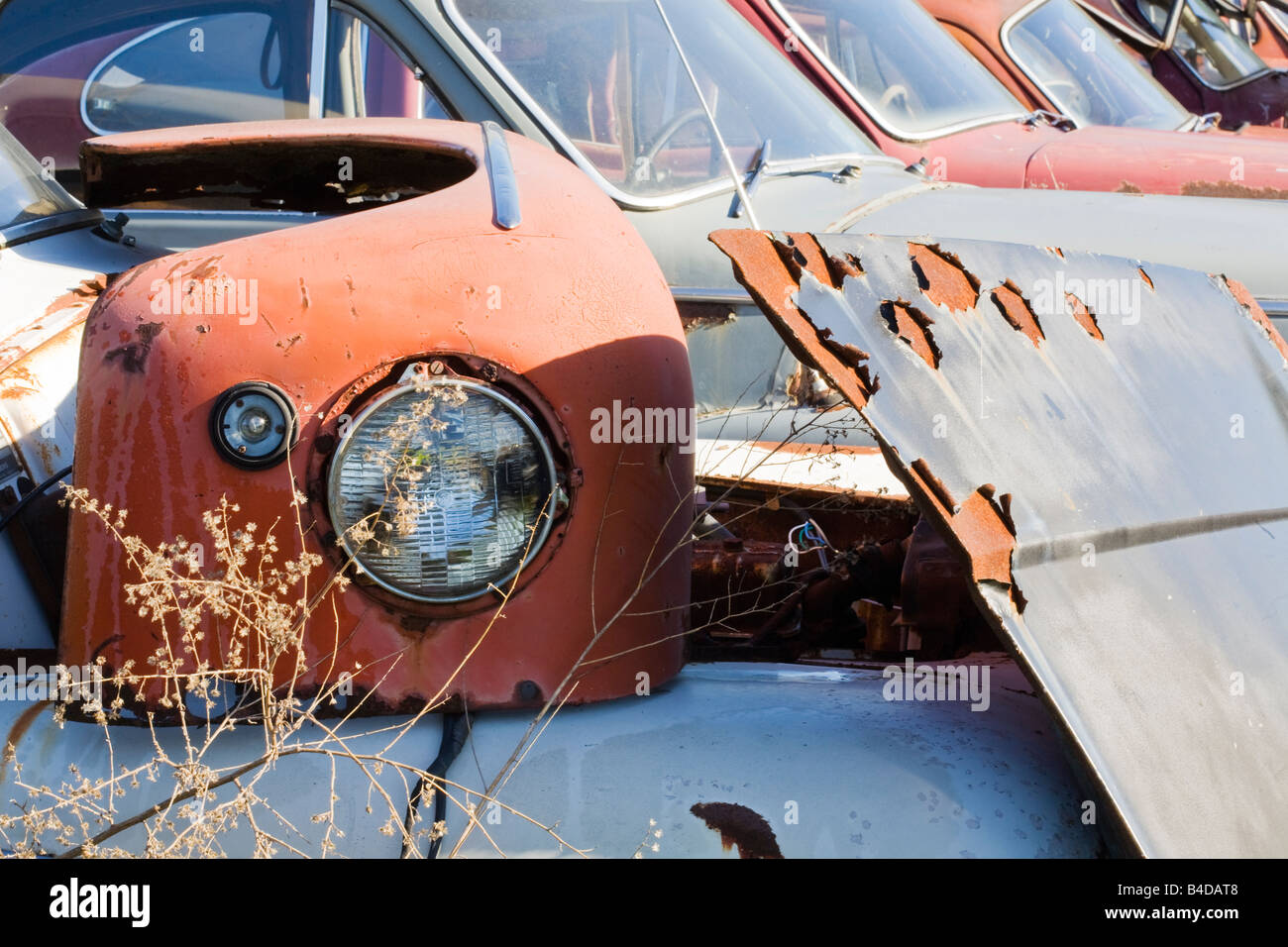 Old cars and parts of cars at auto salvage yard Stock Photo ...