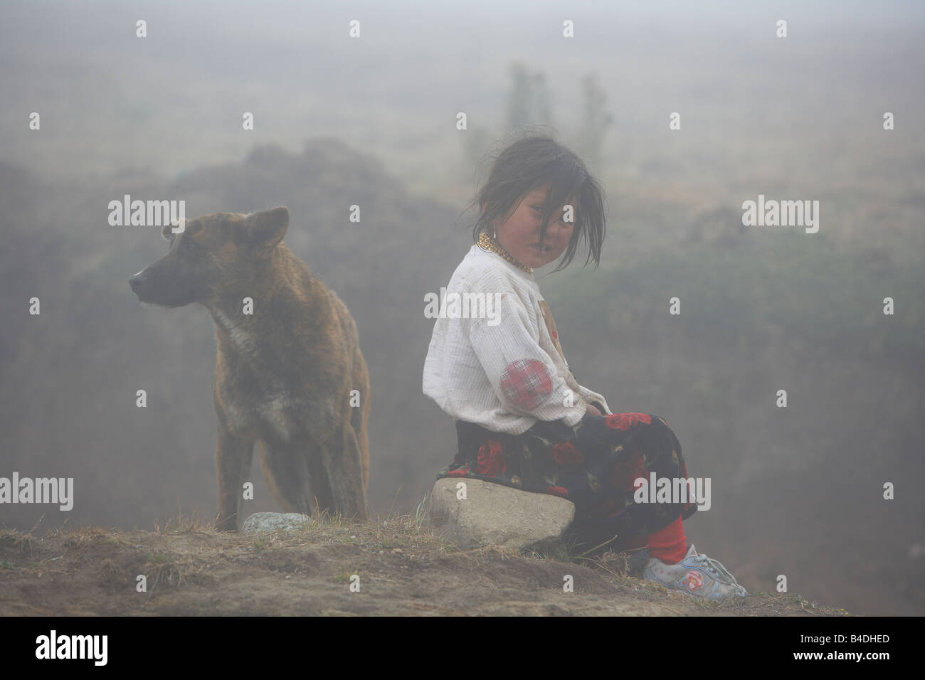 Girl with Dog, Otavalo, Ecuador - Stock Image