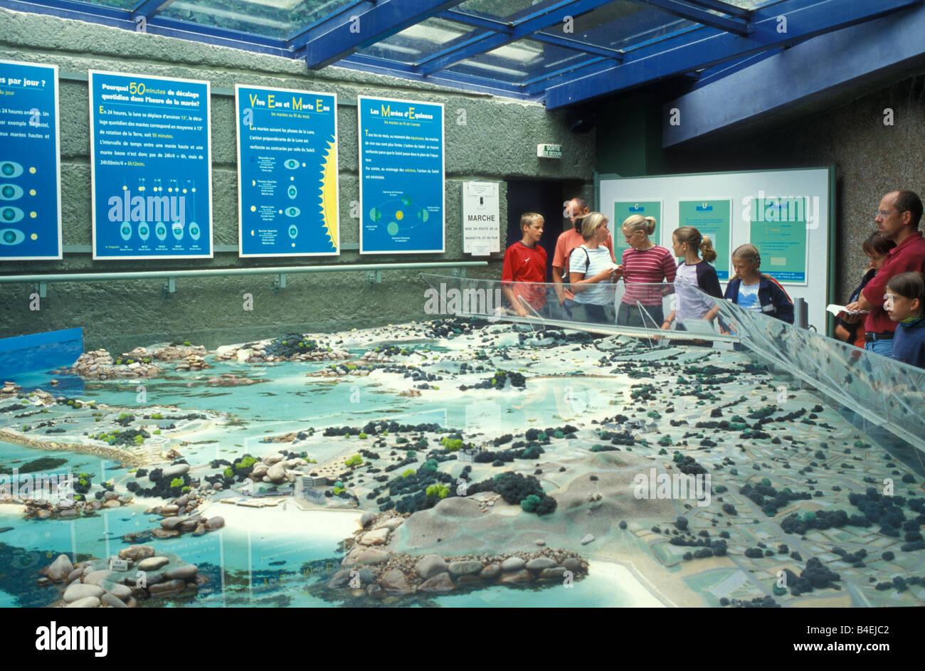 Oceanic Aquarium Aquarium Marin with Tidalmodel in Tregastel Brittany France - Stock Image