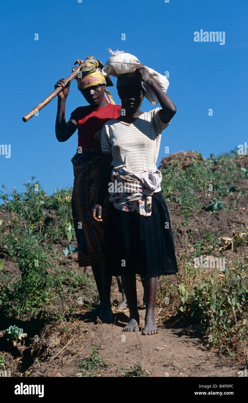 Farm workers in Angola. - Stock Image