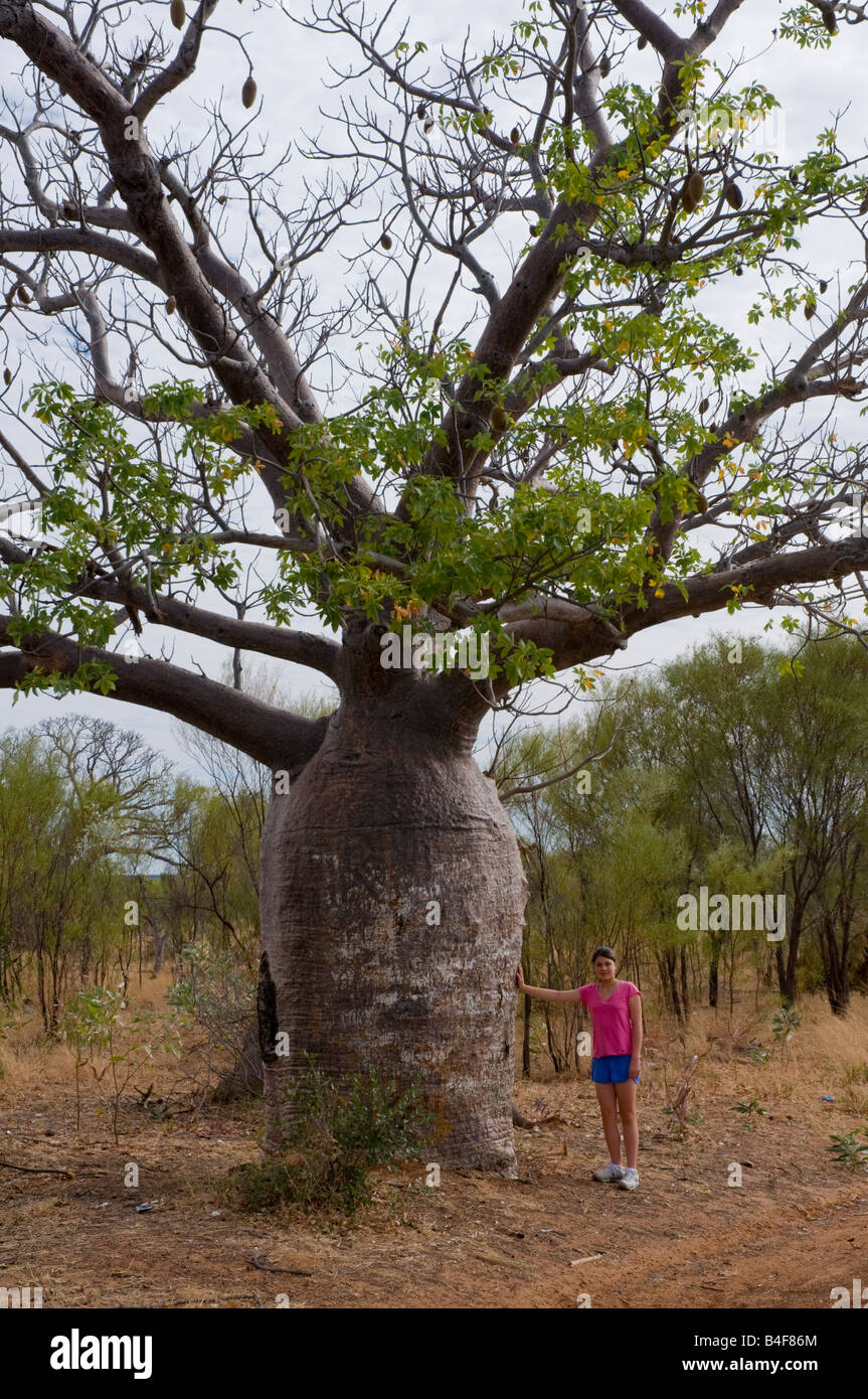 Young girl standing next to a boab tree in the Kimberley region of Western Australia - Stock Image