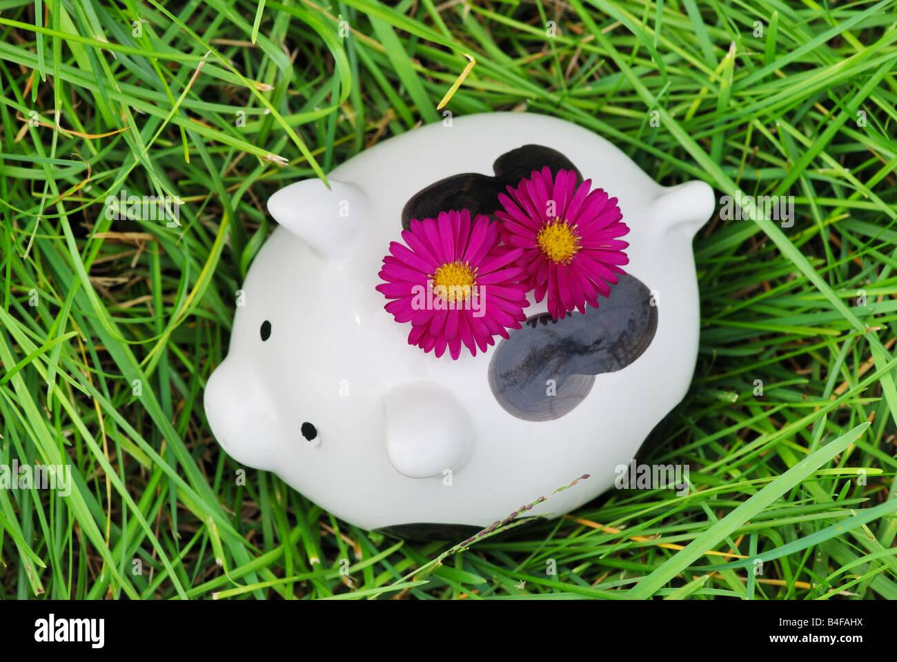 Piggy bank on grass - Stock Image