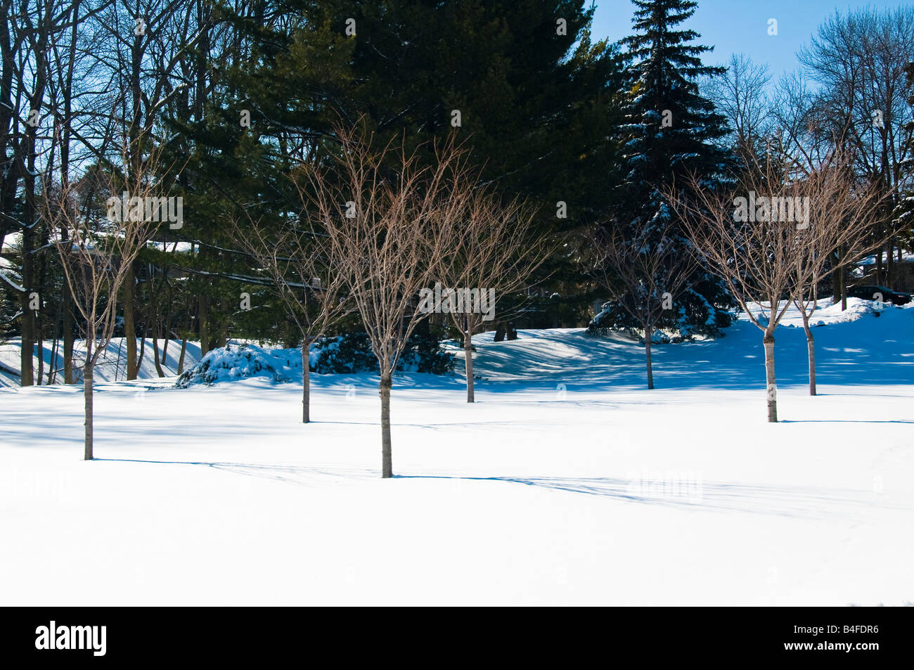 A canadian winter scene at Gairloch Gardens in Oakville, Ontario,Canada Stock Photo