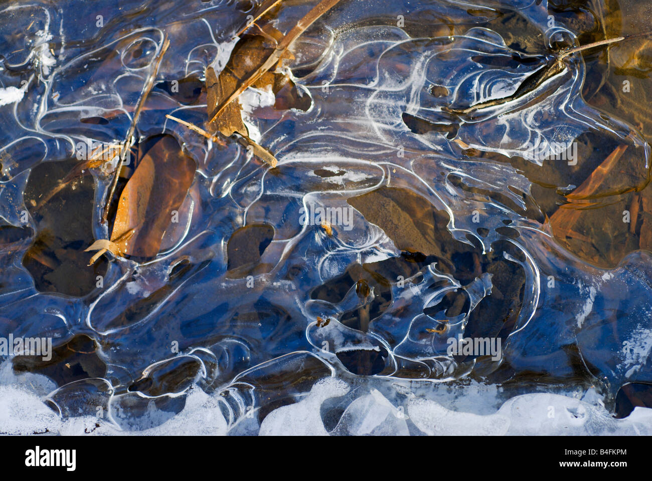 Thin ice on a creek of the Chesapeake Bay. - Stock Image