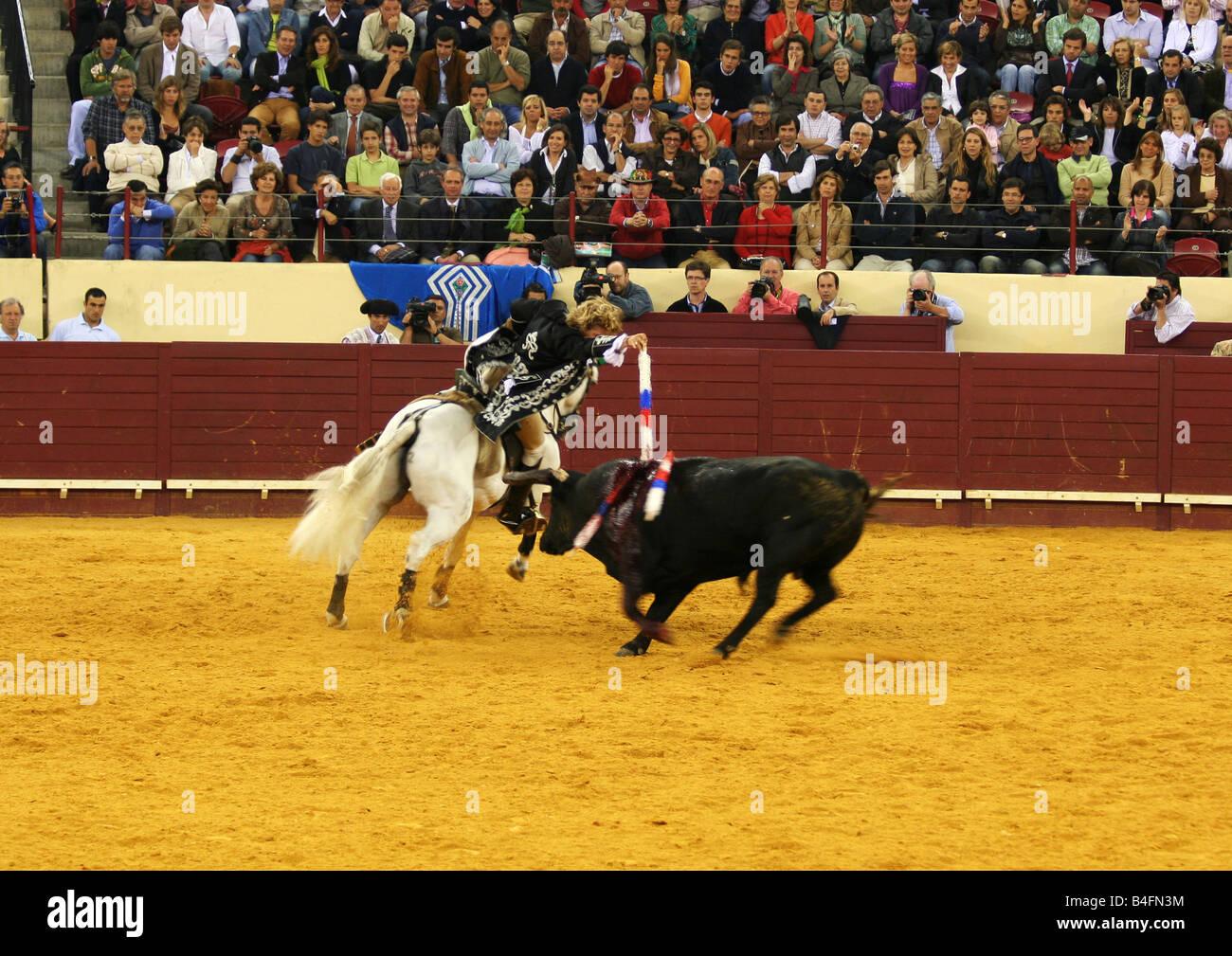 A Cavaleiro stabs the bull at Praca de Touros de Campo Pequeno - Stock Image